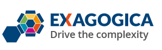 Exagogica - Assessment, Human Resources, Knowledge Management, HR Management, Talent review and People Development, Workflow Management, Health & Safety
